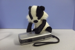 Badger dictaphone